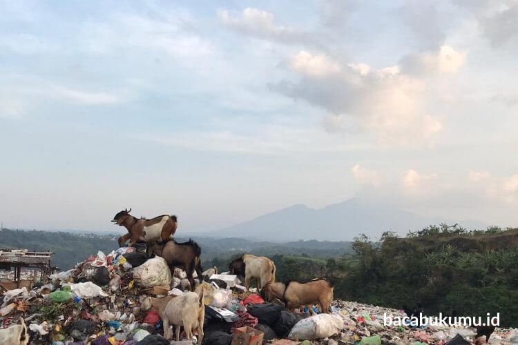 Mendaur Ulang Hidup dari Tumpukan Sampah