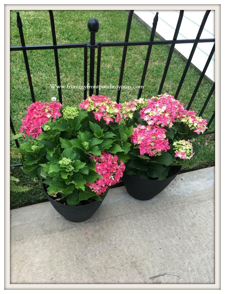 From My Front Porch To Yours Creating A Flower Bed