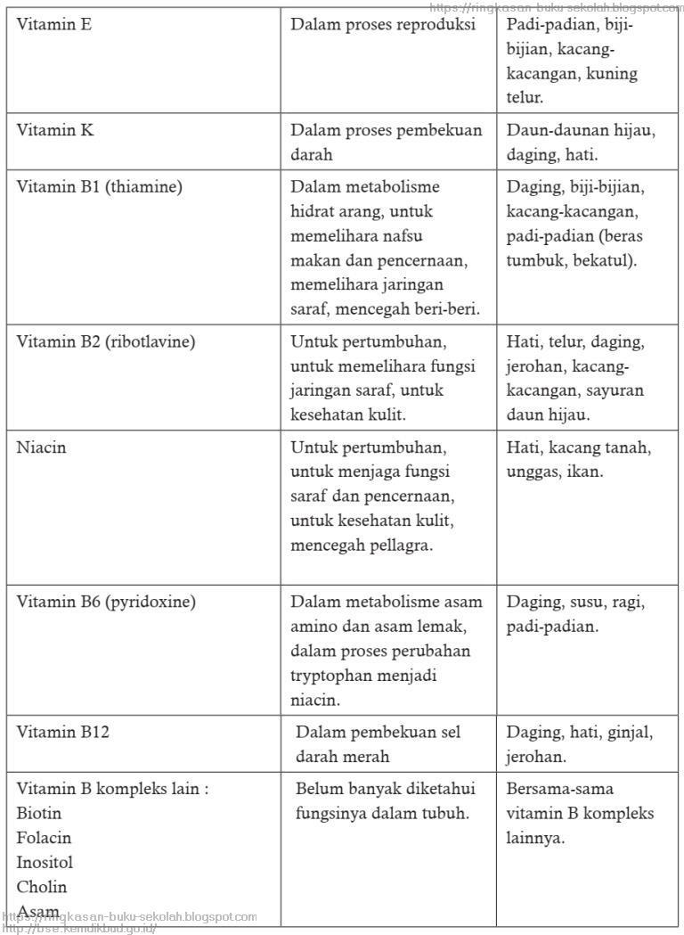 Pelajaran 10 Pola Makan Sehat, Bergizi, dan Seimbang