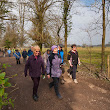 Discover joys of walking with New Forest walking groups | The New Forest and Waterside Hampshire UK Blog