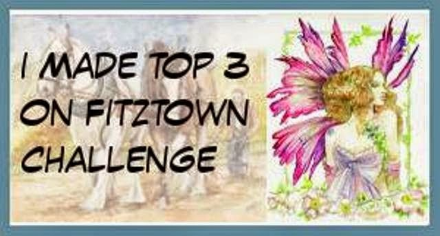 I made the top 3 at Fitztown
