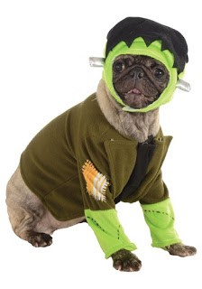 Funny dog halloween costumes-3
