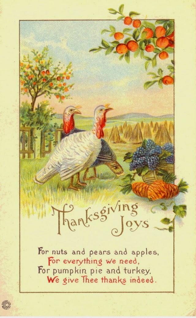 25 Colorful Vintage Thanksgiving Turkey Postcards