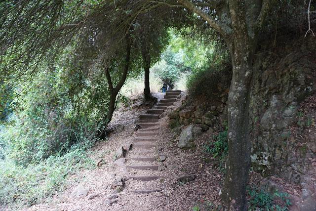 המדרגות בנחל קובי