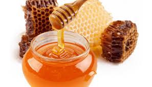 Producción de Miel de Abeja