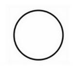 circle in spanish