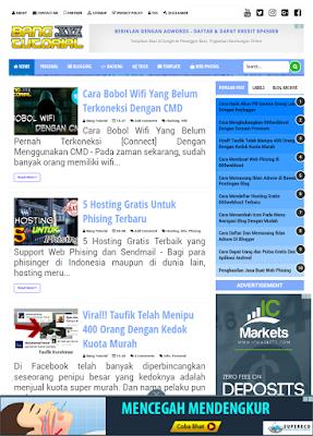 Cek Blog yang Sudah di Setting Domainnya