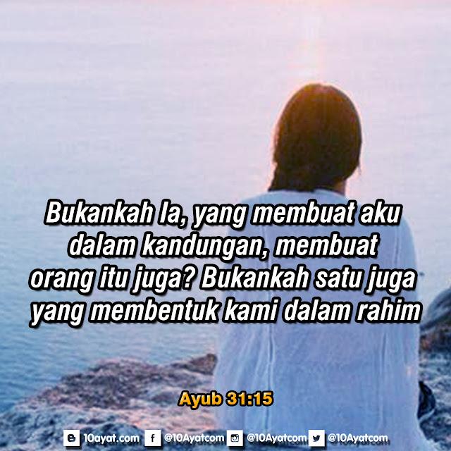 Ayub 31:15