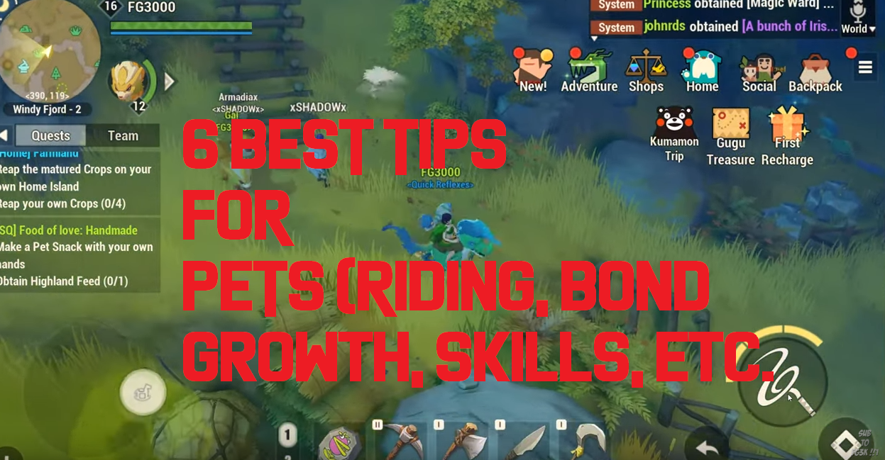 Dawn of Isles Cheats: 6 Best Tips for PETS, Strategy Guide and Tricks