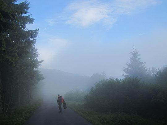 W drodze na Radegast.