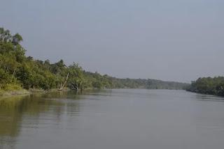 A river in sundarban