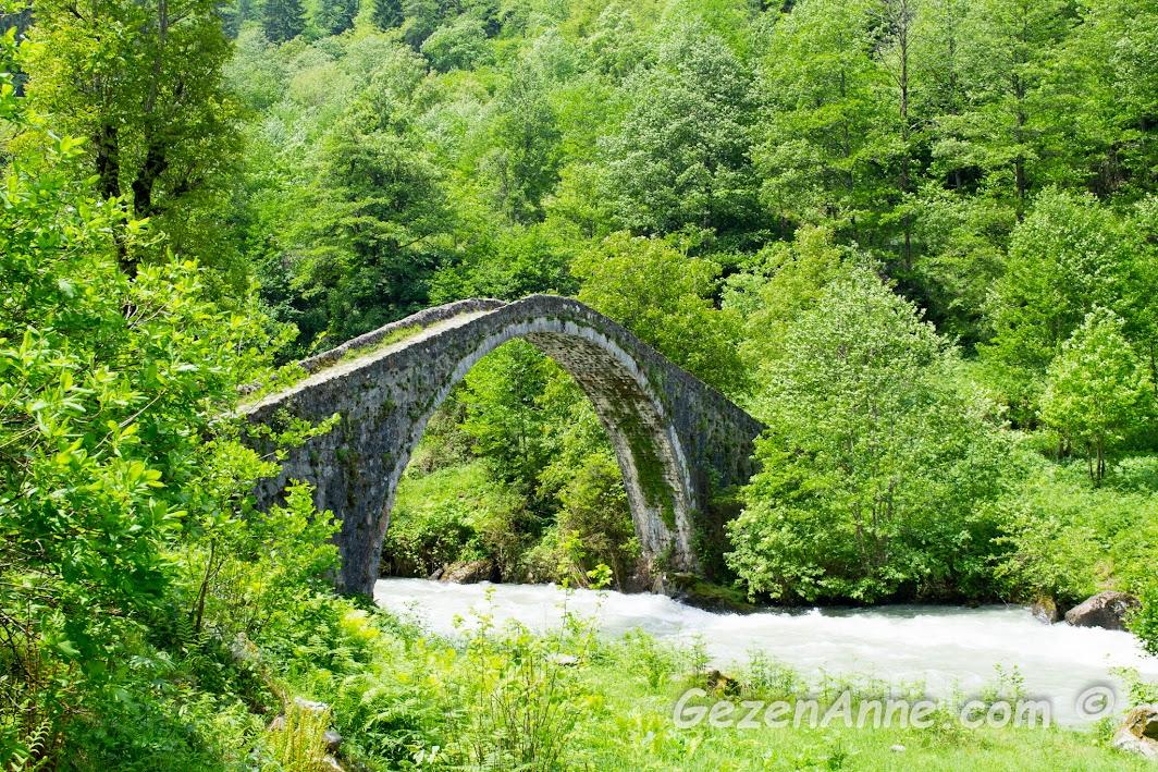 Fırtına deresi ve üzerindeki taş köprülerin bahar aylarında yeşillikler içindeki manzarası, Rize