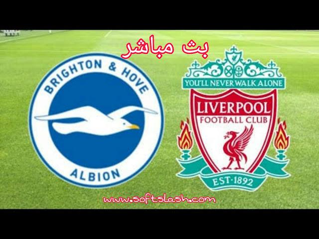 شاهد مباراة Liverpool vs Brighton live بمختلف الجودات