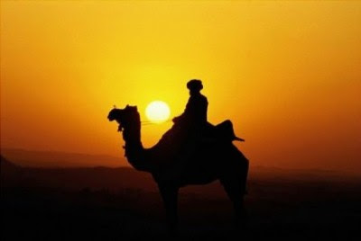 Kisah Abu Bakar Berikan Semua Hartanya Demi Kemajuan Islam