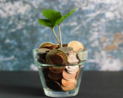 Best Money Earning App in 2020