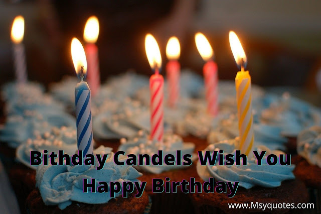 Birthday Candels Wish You Happy Birthday