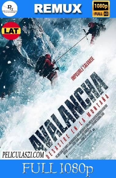 Avalancha, Desastre en la Montaña (2019) Full HD REMUX 1080p Dual-Latino VIP