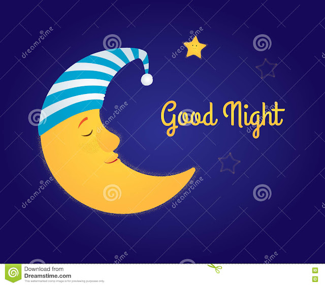 Stylish and  Most Lovely  good night sms for For Everyone   शुभ रात्रि