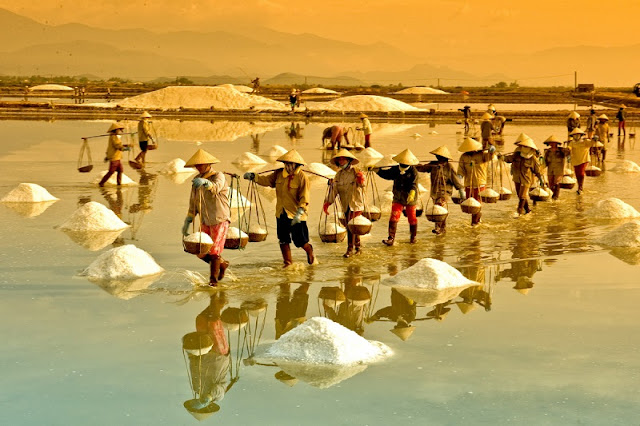 The beauty of salt fields in Vietnam 3