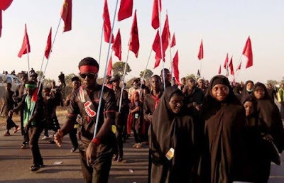 The Islamic Movement in Nigeria