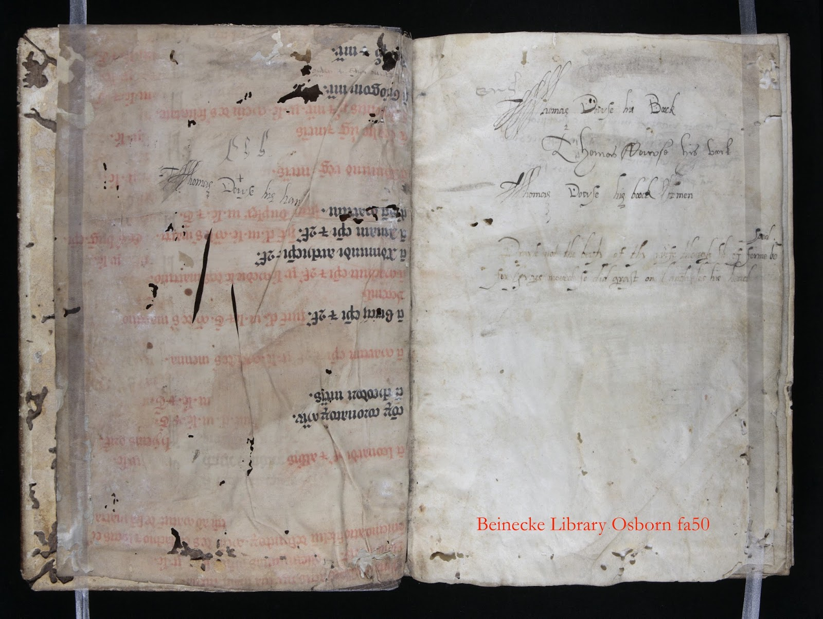 a n c h o r a re membering shakespeare shakespeare was not the only contemporary english writer whose work struck dowse as interesting since on another flyleaf he copied out an extract from