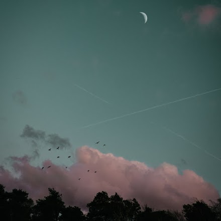 Chris Cross präsentiert das Musikvideo So Lonely feat. Nicole Maisey vom Album 'Transition'