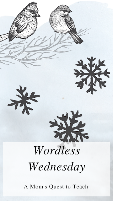 A Mom's Quest to Teach: Wordless Wednesday; cardinal clip art and snowflake clipart