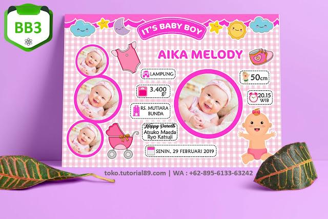 Biodata Bayi Costume Baby Girl Kode BB3