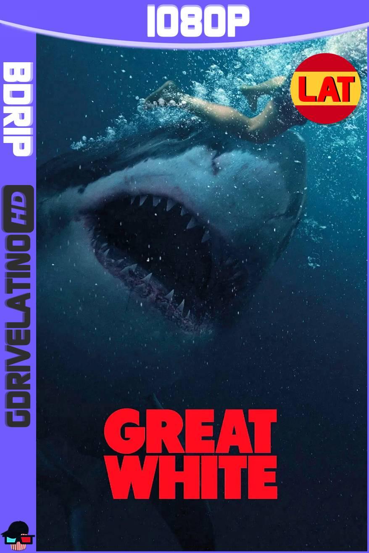 Tiburón Blanco (2021) BDRip 1080p Latino-Ingles MKV