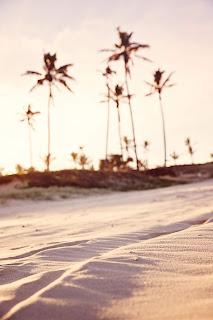 beach blurred background golden hour landscape 1151282