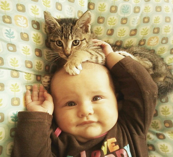 12+ Adorable Photos Proving That Your Kids Need A Cat