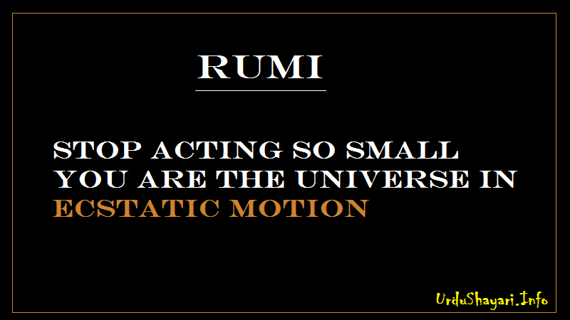 Wisdom Quotes , Rumi on Ecstatic Motion