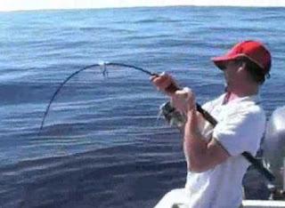 كيفية صيد الاسماك بجميع انواعها