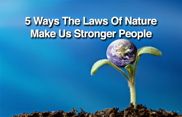 5 Ways The Laws Of Nature Make Us Stronger People