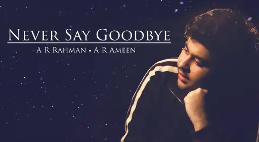 Goodbye when i lyrics say STEPS