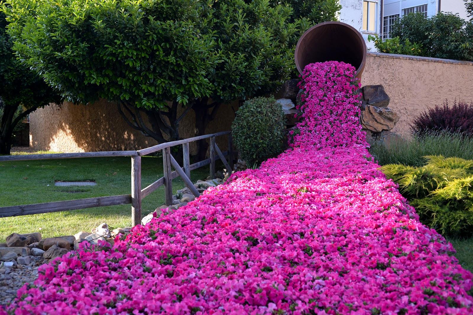 parque primavera flores astorga