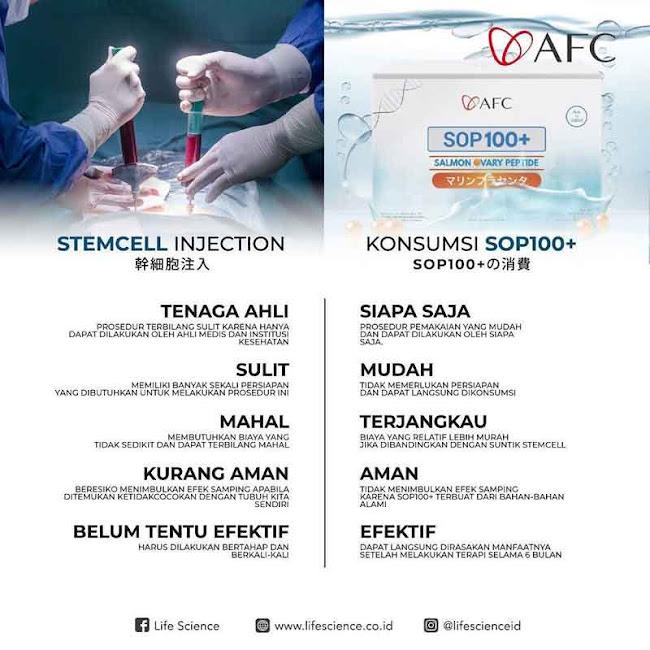 SOP Subarashi Japan: Cara Obat Stem Cell yang Mudah dan Halal<br/>.