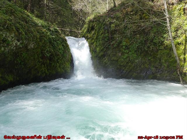 Buck Creek Falls Washington