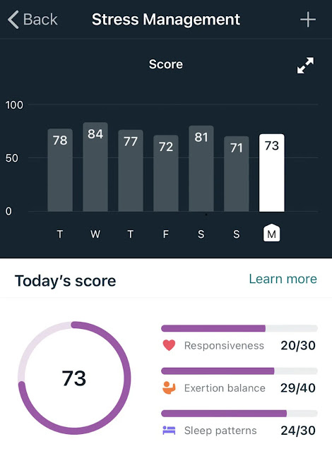 Fitbit Health And Fitness Scores And Stats Explained