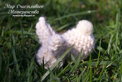 заяц вальдорфский