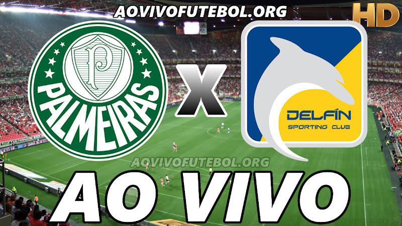 Palmeiras x Delfín Ao Vivo Hoje em HD