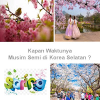 Kapan Musim Semi di Korea Selatan