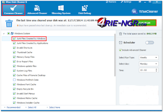 Wise Disk Cleaner 9.49 Build 669 Terbaru Gratis