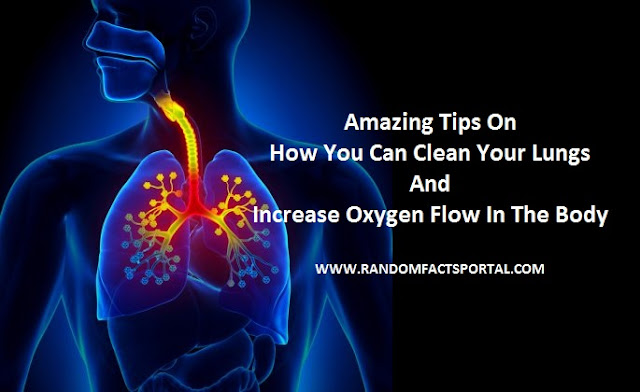Amazing Tips On How You Can Clean Your Lungs And Increase Oxygen Flow In The Body