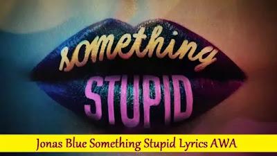 Jonas Blue Something Stupid Lyrics AWA