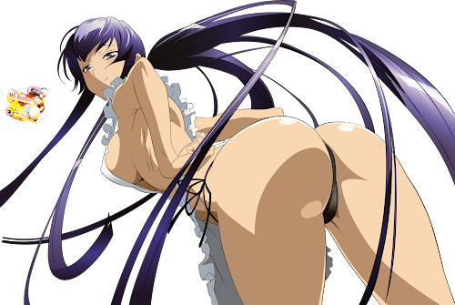 Highschool Of The Dead: Busujima Saeko Render 17 Ecchi