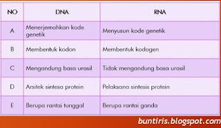 soal un biologi tentang substansi genetika