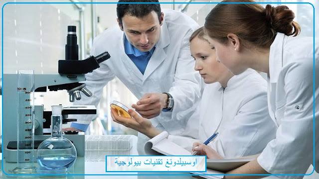 اوسبيلدونغ علم الاحياء في المانيا اوسبيلدونغ تقنيات الحيوية في المانيا باللغة العربية