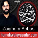 https://www.humaliwalyazadar.com/2018/09/zaigham-abbas-nohay-2019.html
