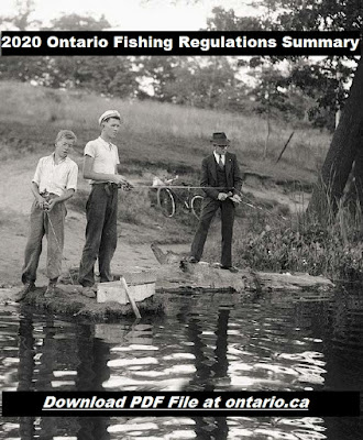 https://files.ontario.ca/mnrf-fishing-regulations-summary-en-2019-12-13.pdf
